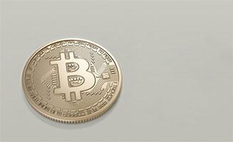Top 3 Bitcoin Investors